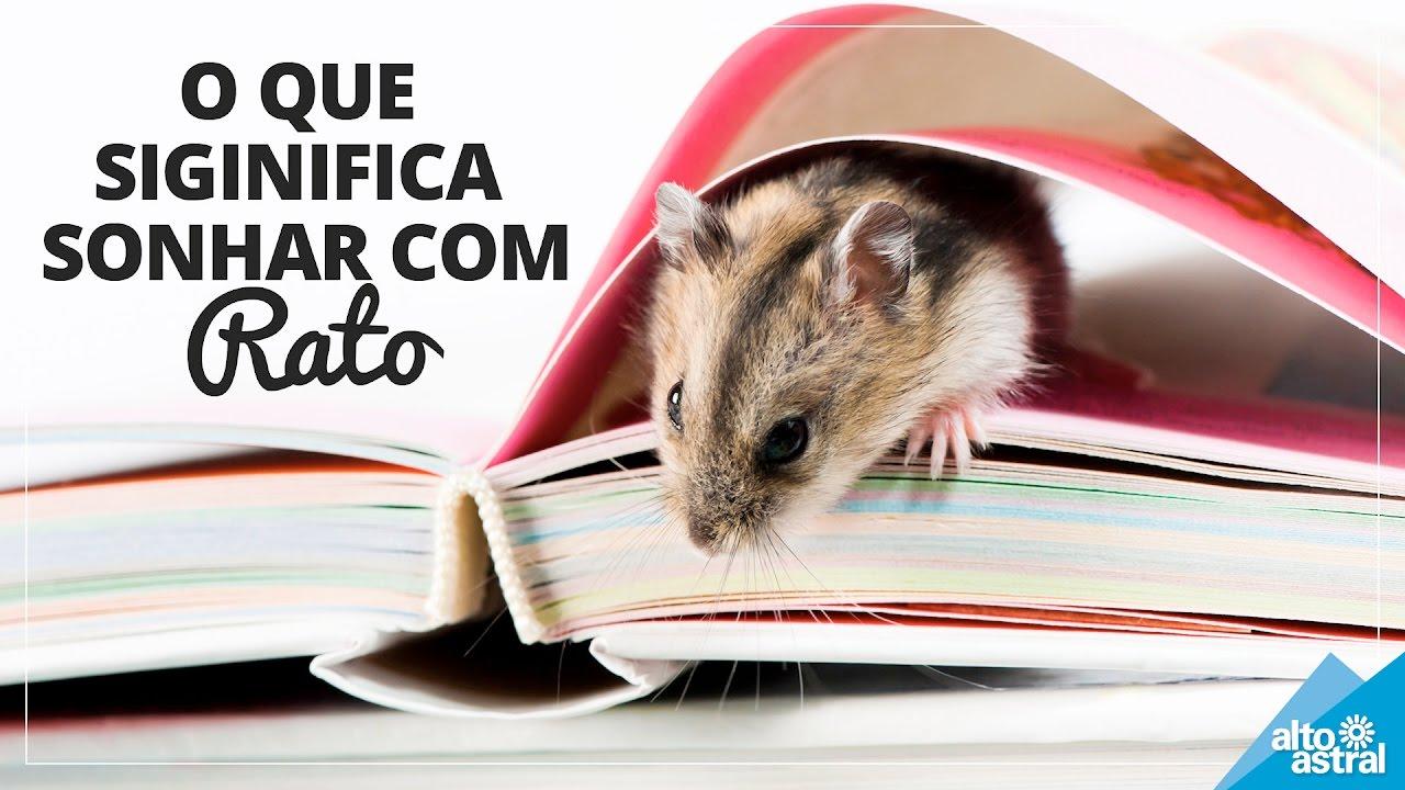 Significado do Sonho: Rato