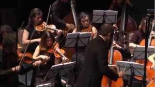 Mozart Symphony No. 40 I, Tel-Aviv Soloists/Barak Tal