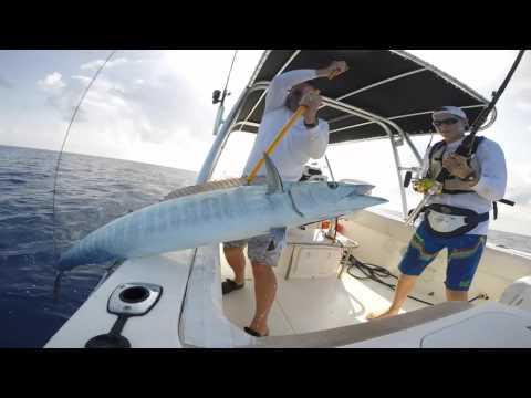 Wahoo Fishing--Virgin Islands (IKATI)