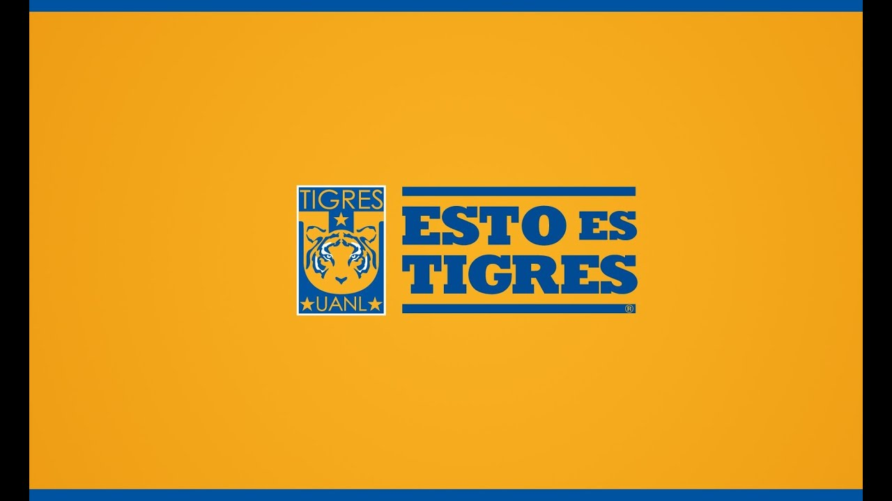 Himno De Tigres Con Link De Descarga Youtube