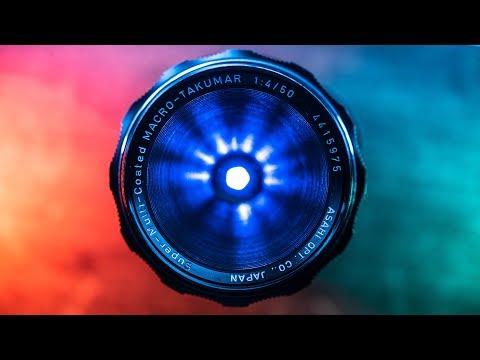 how-to-make-macro-photography-pop-//-3-simple-lighting-tricks
