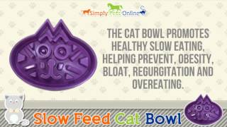 Interactive Slow Feed Cat Food bowl - Eco-friendly Bamboo Fibre - Designed By Veterinarians