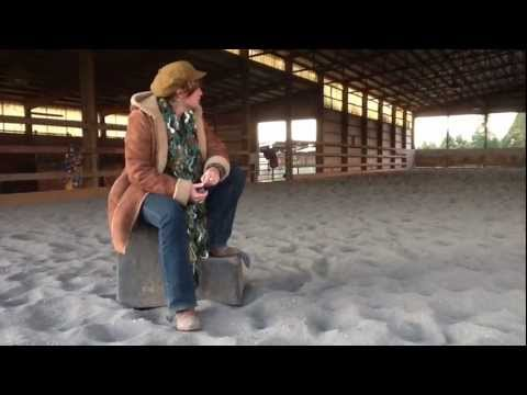 Veteran Horse Therapy