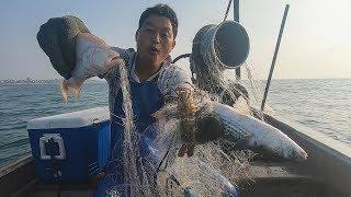阿阳赚钱后再开下几排渔网,没想到连上好几条大货,太让人激动了