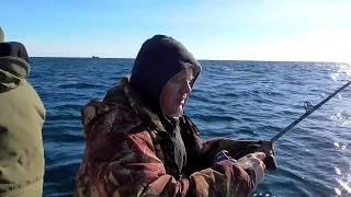 Морская рыбалка в Териберке . ( Открытие сезона )