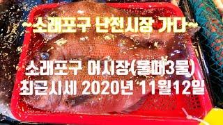 소래포구 (최신시세정보) 11월12일 소래포구어시장 시…