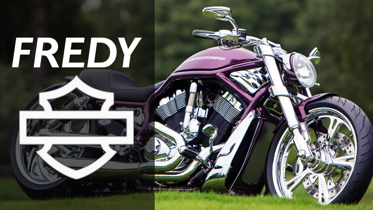 harley davidson v rod purple by fredy motorcycle muscle custom review youtube. Black Bedroom Furniture Sets. Home Design Ideas