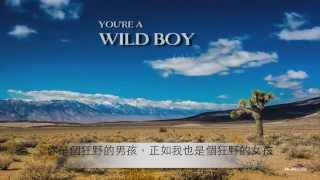 Avicii - Dear Boy 親愛的男孩