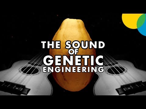 The Sound of Genetic Engineering