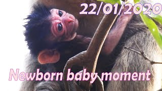 Wow..!One more, Congrats for Newborn baby moment in Sady's group, Young Lady gave a birth 22/01/2020