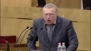 Что это Шоу начинается   Жириновский про выборы в РФ