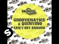 Groovenatics featuring Quintino - Can't Get Enough (Dub mix)