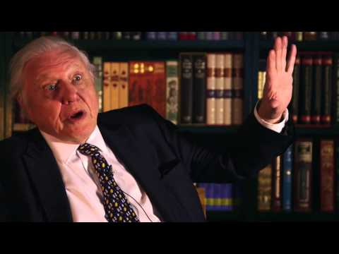 Sir David Attenborough's love of books | The Folio Society
