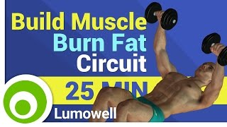Build Muscle and Burn Fat - Strength Circuit Workout
