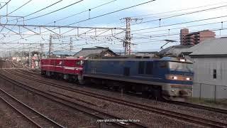 JR貨物 関西初見参のEH800 11号機無動輸送の撮影(H30.1.15)