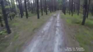 Погоня медведя за велосипедистом