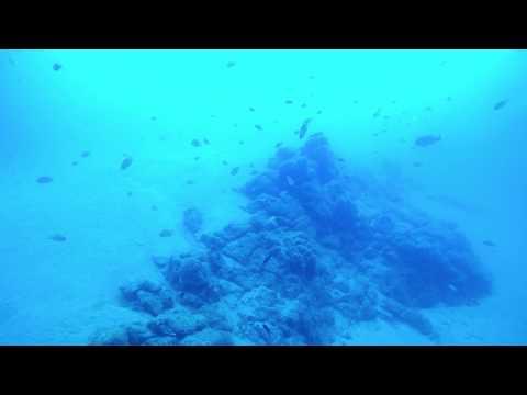 Diving Lanzarote - 31