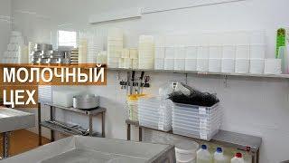 видео: Сыроварня Сергея Балаева. Оборудование сыроварни. Молочный цех.