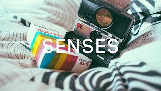 Tyga Type Beat x TY Dolla Sign Type Beat  Senses | R&B Type Beat | R&B Instrumental