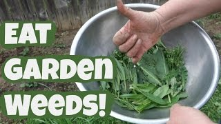 Eating Garden Weeds: How-to Tips