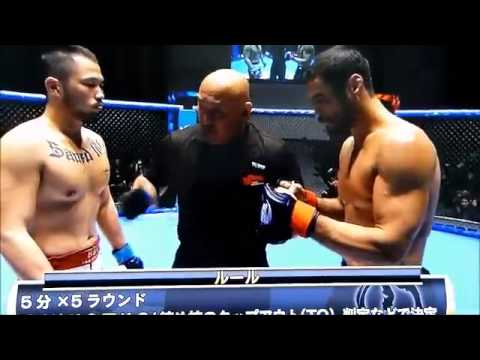 Kron Gracie Hype Train Derailed Bjjscout Com