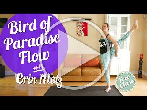 bird of paradise yoga flow advanced  youtube