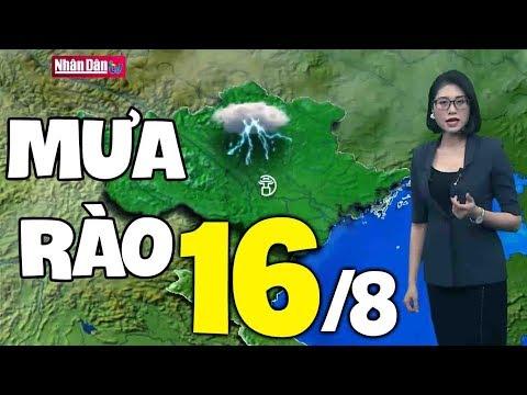 Dự báo thời tiết hôm nay và ngày mai 16/8 | Bản tin thời tiết đêm nay mới nhất