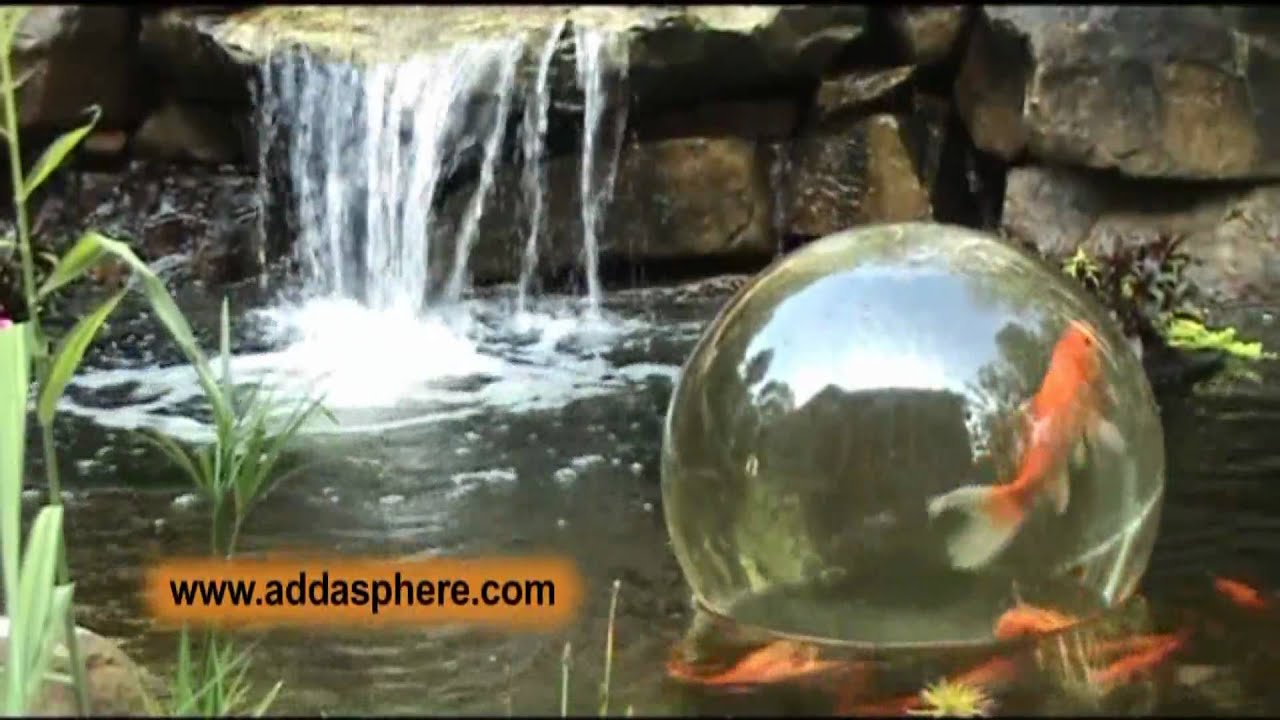 Aquatic addasphere by day youtube for Surface fish ponds