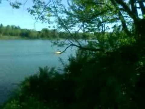 Camping London Ontario >> Family Camping At Fanshawe Conservation Area London Ontario