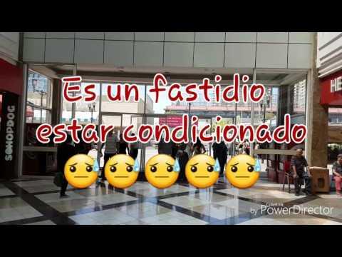 Alquileres en Chile + Comparacion de alquiler con Panama + Mall Plaza Vespucio + Pista de hielo