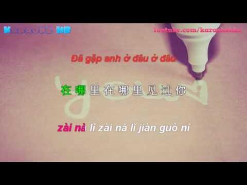 Mật Ngọt - Đồng Lệ | 甜蜜蜜 - 童丽 ( Tian Mi Mi Pinyin Vietsub )