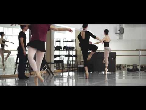 MADRID DANCE CENTER  Programa profesional