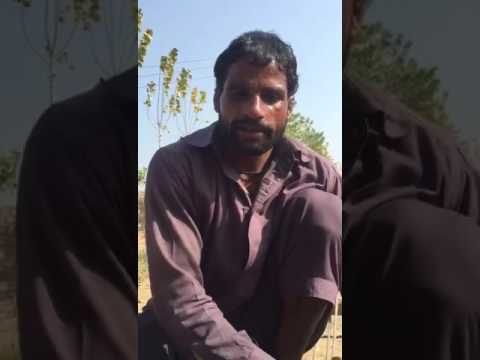 Learn English from Punjabi very funny