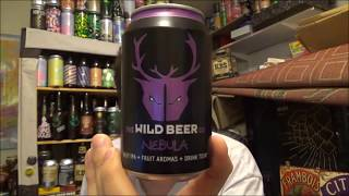 #919 Wild Beer Co | Nebula IPA 5%ABV (English Craft Beer)