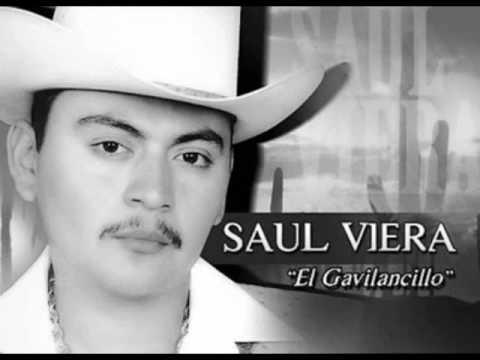 """Saul Viera """"El Gavilancillo---""""Corrido De Elido Guerrero"""""""