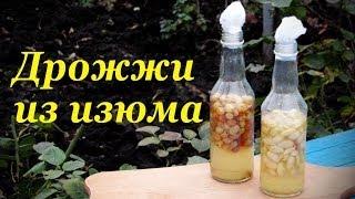 Дрожжи из изюма. Закваска.(Рецепты домашнего алкоголя проверенные на собственном организме Подписывайтесь http://www.youtube.com/user/alkofan1984?sub_con..., 2013-11-15T09:40:47.000Z)
