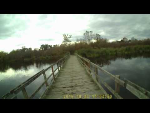 Run around Swan Lake Loop trail in Saanich BC (about 3.5 km round trip)