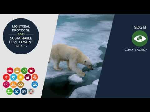 Montreal Protocol and  the SDGs