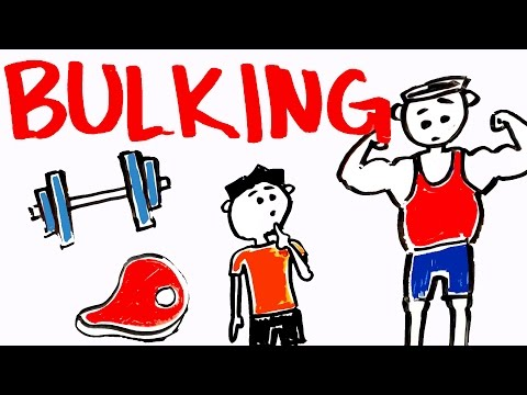What is Bulking? Will It Make You Gain Muscle?