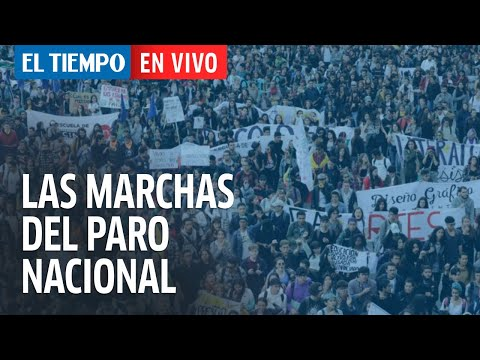 Las Marchas Del Paro Nacional
