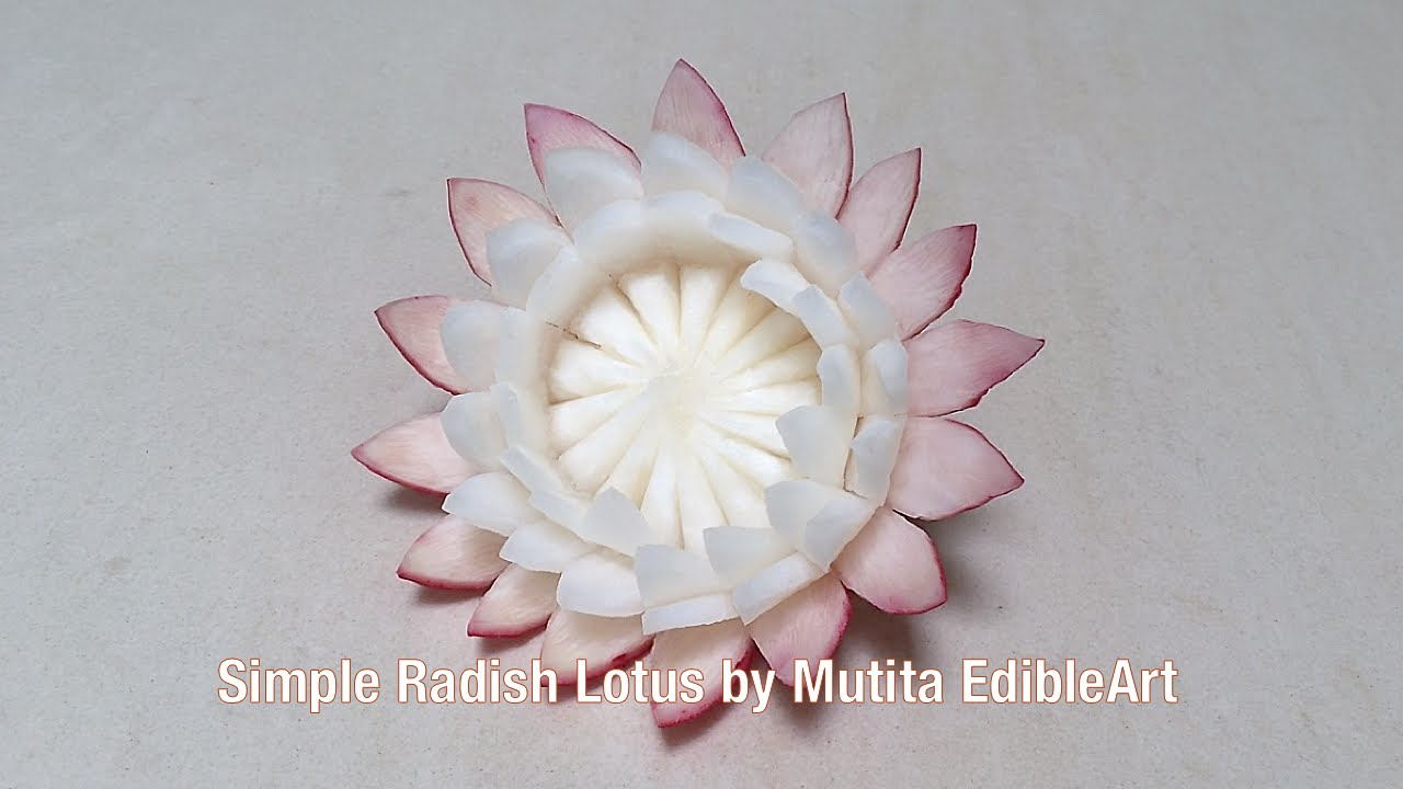 Radish simple lotus flower beginners lesson 20 by mutita fruit veg radish simple lotus flower beginners lesson 20 by mutita fruit veg carving tutorial youtube izmirmasajfo