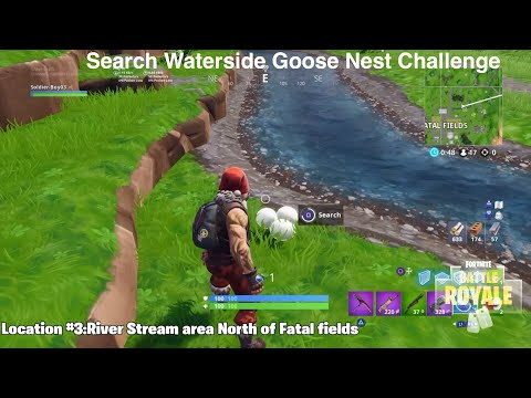Search Waterside goose nest:14Days of Fortnite Challenge (PS4 Game play)