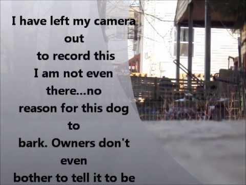 Crappy Neighbors Barking Dog Youtube