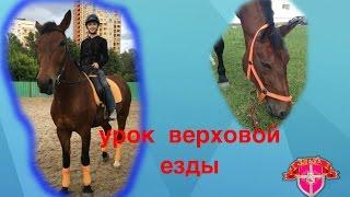 Урок верховой езды #3 / упражнения и езда на природе/ Конно-Спортивная база ЦСКА
