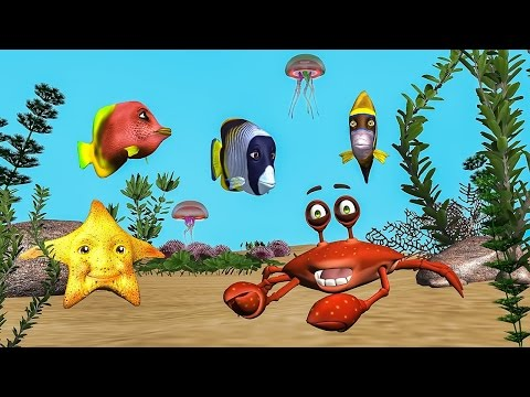 funny-happy-birthday-song.-fish-sing-happy-birthday-to-you