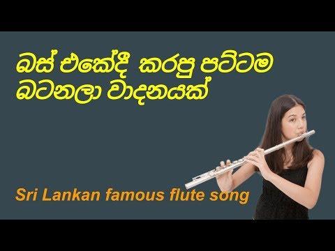 Sri lankan sinhala instrumental music sri lankan life 14-12.