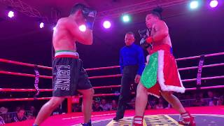 El Tigre Professional Boxing Event Highlight Reel With Many Knock Outs And Wars