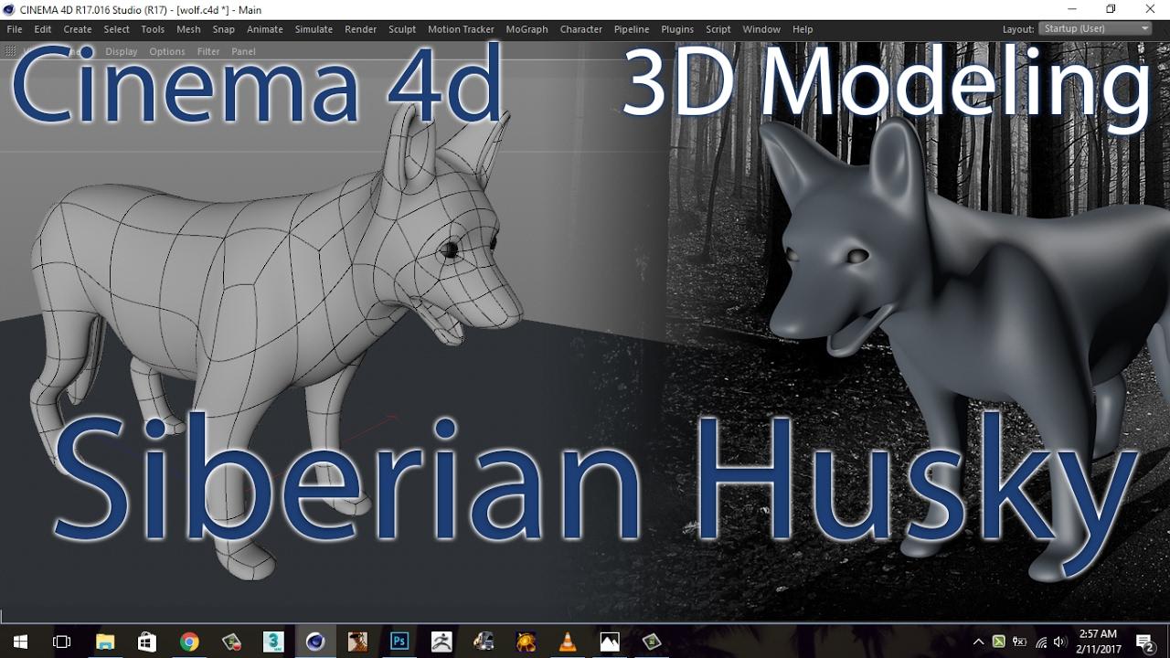 CINEMA 4D | TUTORIAL | HUSKY | 3D MODELING (DOG/WOLF)