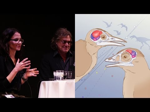Which Came First - the Bird or the Bird Brain? - AMNH SciCafe