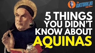 Summa This, Summa That: All About Aquinas With Matt Fradd | The Catholic Talk Show